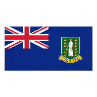 British Virgin Islands Flag Art Photo