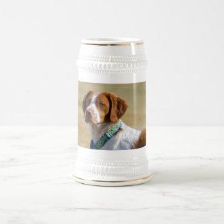 Brittany dog beautiful photo stein