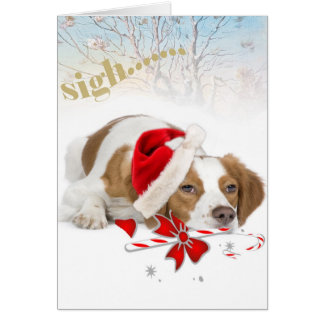 Brittany Santa Takes So Long Cards