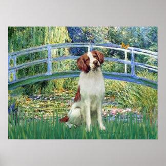Brittany Spaniel 3 - Lily Pond Bridge Poster