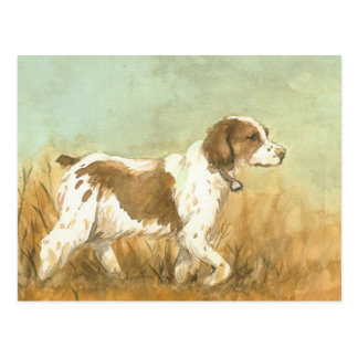"""Brittany Spaniel"" Art Reproduction Postcard"