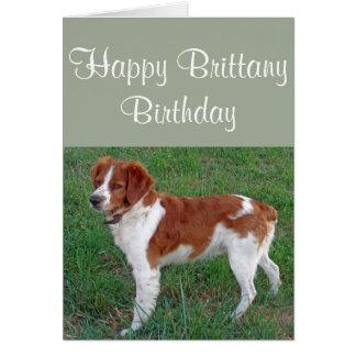 Brittany Spaniel Card