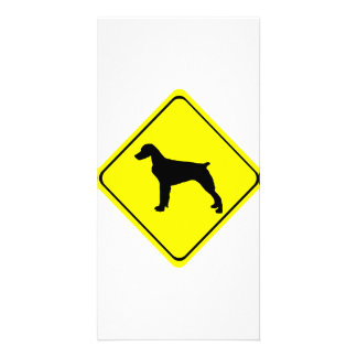 Brittany Spaniel Dog Caution or Crossing Sign Customised Photo Card