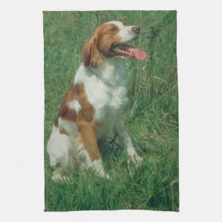 Brittany Spaniel Dog Kitchen Towel
