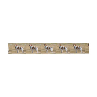brittany-spaniel full invitation belly band