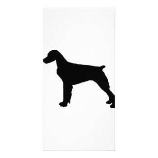 Brittany Spaniel sporting hunting dog Silhouette Personalized Photo Card