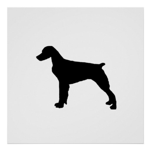 Brittany Spaniel sporting hunting dog Silhouette Print