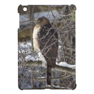 Broad-winged Hawk iPad Mini Cover