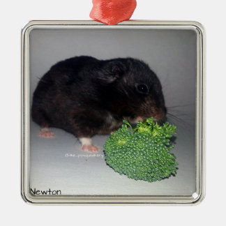 Broccoli is Healthy and Delicious Silver-Colored Square Decoration