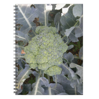 Broccoli Notebook