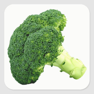 Broccoli Square Sticker
