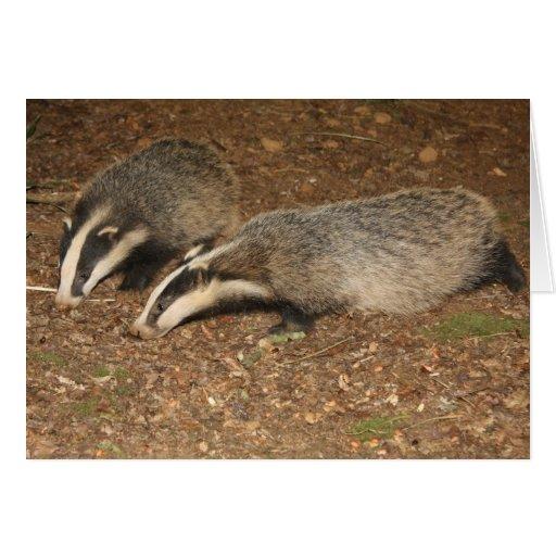 Brockwatch badger greetings card