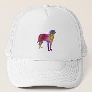 Broholmer in watercolor trucker hat