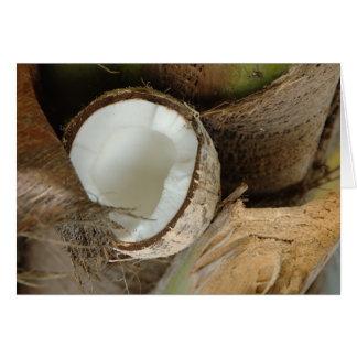 Broken coconut card