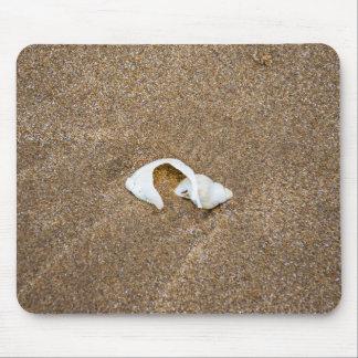 Broken shell mousepad