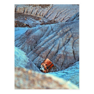 """""""Broken Wood in Blue Canyon"""" collection Postcard"""