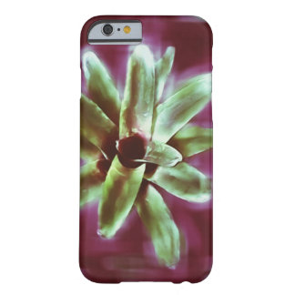 Bromeliad Plant, burgundy iPhone 6/6s cover
