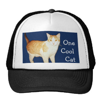 Bronco The Cat Cap