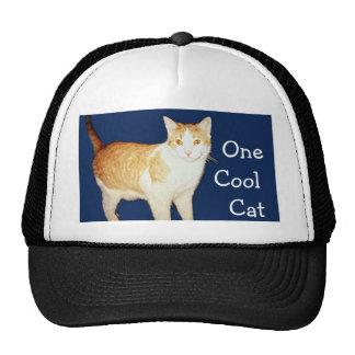 Bronco The Cat Cap
