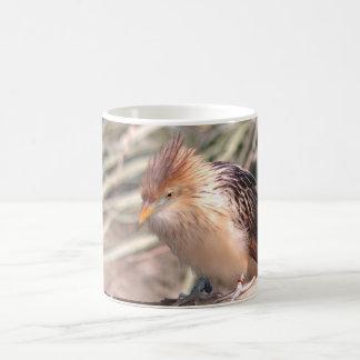 Bronx Zoo 019 Coffee Mug
