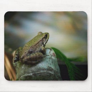 Bronze Frog on Froggy Mouse Pad