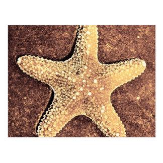 Bronze Starfish Post Card