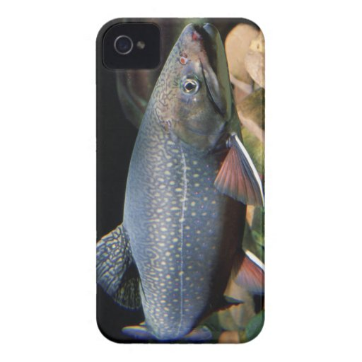Brook Trout - BlackBerry Bold Cover