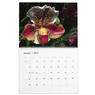 Brooklyn Orchids 2017 Calendar