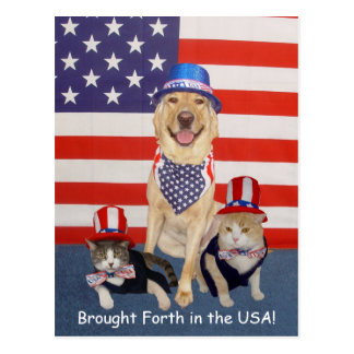 Brought Forth in the USA! Postcard