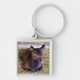 Brown Alpaca Key Ring