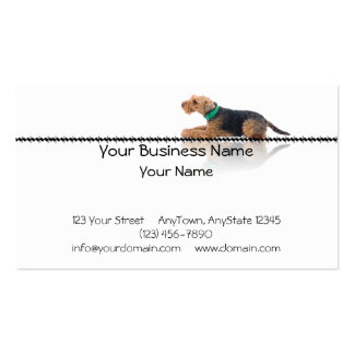 Brown and Black Welsh Terrier Laying on Zig Zag Business Card Template