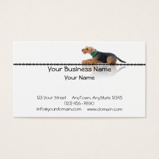 Brown and Black Welsh Terrier Laying on Zig Zag Business Card