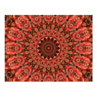 "Brown and Melon ""Tangerine Kiss"" Mandala Postcard"