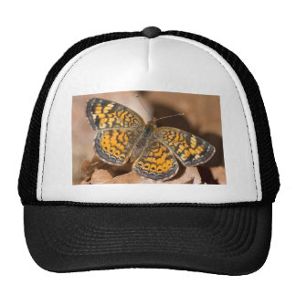 Brown and Orange Moth Apparel and Gifts Hats