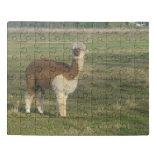 Brown And White Alpaca Jigsaw Puzzle