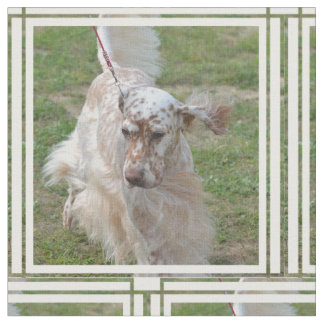 Brown and White English Setter Fabric