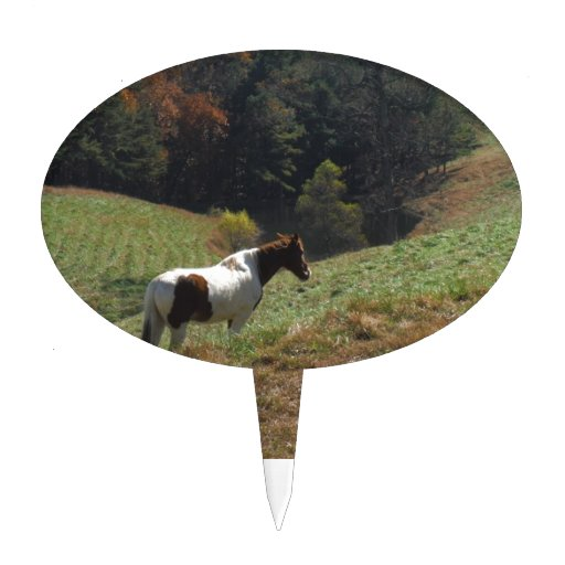 Brown and white horse at autumn pond cake topper