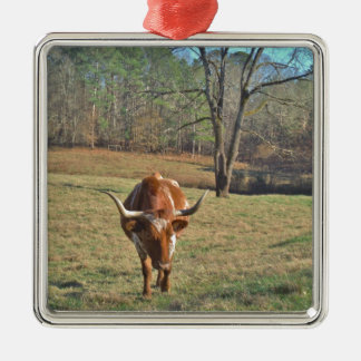 Brown and White Longhorn Bull Blue Sky Metal Ornament