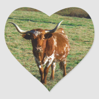Brown and White Longhorn Bull Sticker