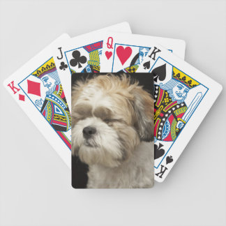 Brown and white Shih Tzu with eyes closed Poker Deck