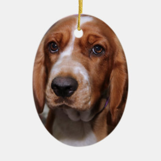 BROWN AND WHITE SPANIEL ORNAMENT