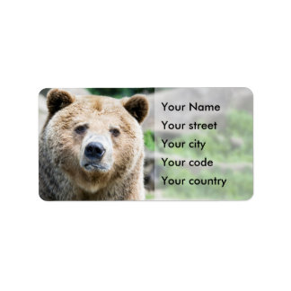 Brown Bear Address Label