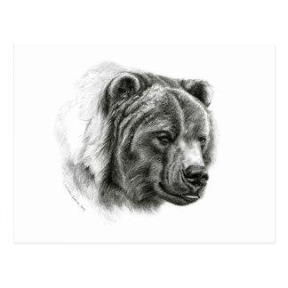 Brown Bear design by Schukina G054 Postcard