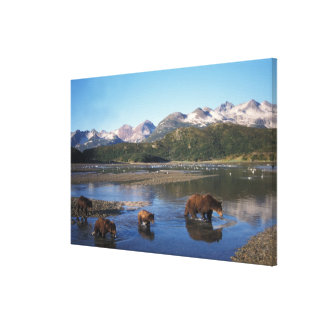 Brown bear, grizzly bear, sow and cubs in canvas print
