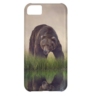 Brown Bear iPhone 5C case