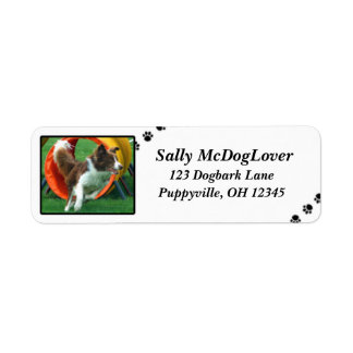 Brown Border Collie Agility Return Address Label