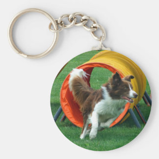 Brown Border Collie Agility Tunnel Key Ring