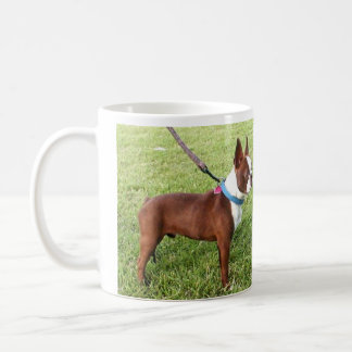 Brown Boston Terrier Mug