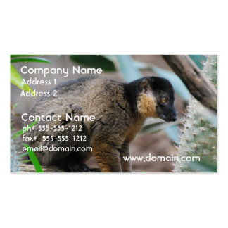 Brown Collared Lemur Business Cards
