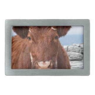 Brown Cow Rectangular Belt Buckle